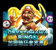 ทดลองเล่น Cryptomania Bingo