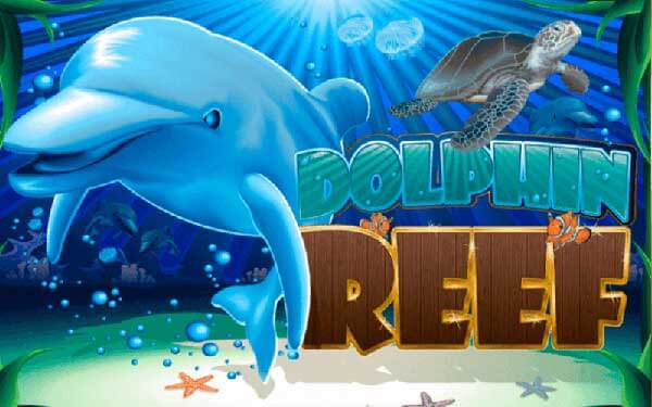 รีวิวเกม Dolphin Reef Joker8899